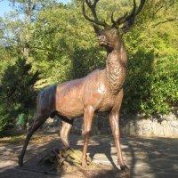 Karlovy Vary - plastika jelena