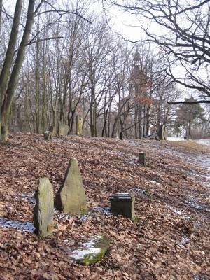 Lapidárium zaniklých obcí Doupovských hor na Vintířovském vrchu - březen 2010