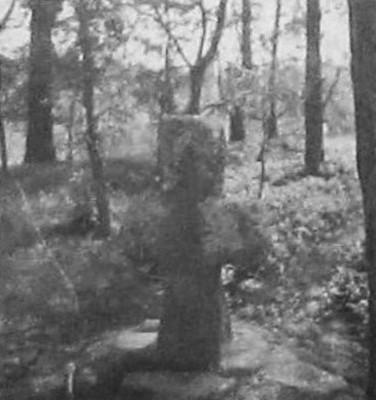 přenesený smírčí kříž při lesní cestě do Mezirolí na historické fotografii z doby kolem roku 1939