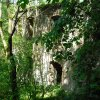 Svatobor - fara   zahradní průčelí zdevastované fary - květen 2009