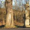 Stružná - socha sv. Jana Nepomuckého | zchátralá socha sv. Jana Nepomuckého v aleji u příjezdové silnice do Stružné - březen 2017