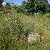 Bražec - Würknerův kříž   zdevastovaný Würknerův kříž na úpatí Kostelní hůrky nad Bražcem - červenec 2015