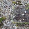 Horní Tašovice - Russenský kříž | rozvalený kamenný podstavec zdesvatovaného Russenského kříže u Horních Tašovic - březen 2017
