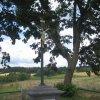Chyše - Cholerový kříž | obnovený Cholerový kříž - červenec 2012