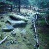 Bečov nad Teplou - kaple sv. Petra | rozvalené trosky pohřební kaple sv. Petra - prosinec 2013