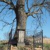 Herstošice - železný kříž | obnovený kříž na návsi v Herstošicích - březen 2017