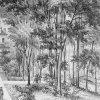Ostrov - letohrádek | letohrádek na rytině J. Schäflera z poloviny 19. století