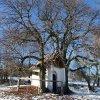Krásno - kaple Panny Marie Sněžné | kaple Panny Marie Sněžné od východu - prosinec 2013
