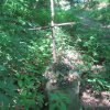 Skoky - železný kříž   zdevastovaný podstavec při cestě ke hřbitovu - červenec 2013