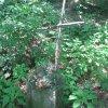 Skoky - železný kříž   torzo zdevastovaného podstavce s provizorním křížem - červenec 2013