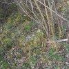 Lažany - Michlův kříž | situace objeveného rozvaleného podstavce Michlova kříže v lesíku uprostřed polí - duben 2016