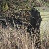 Borek - železný kříž | zchátralý podstavec odlomeného železného kříže při silnici na Štědrou - březen 2016