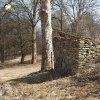 Bohuslav - kaple | zříceniny klasicistní obecní kaple v horní části bývalé návsi ve vsi Bohuslav od severu - březen 2018