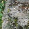Služetín - pomník obětem 1. světové války | vysekaný pamětní německý nápis s dnes již nečitelným vročením pomníku - červenec 2018