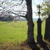 Dvory - železný kříž | železný kříž mezi dvěma vzrostlými javory na loukách severně od vsi Dvory - říjen 2017