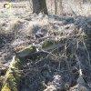 Horní Valov - kaple | zbytky podezdívky z lomového kamene zbořené obecní kaple v bývalém Horním Valově - březen 2017