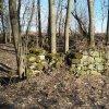 Bražec - Dolní mlýn | zříceniny objektu v areálu zaniklého Dolního mlýnu u Bražce - březen 2017