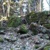 Javorná - Rábův mlýn | zříceniny provozních objektů v zadní části areálu zaniklého Rábova mlýna u Javorné - březen 2017