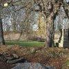 Pávice - železný kříž   zchátralý podstavec kříže mezi dvojicí javorů na bývalé návsi uprostřed vsi Pávice - březen 2017