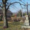 Prohoř - železný kříž | obnovený kříž pod dvojicí vzrostlých stromů na návsi v Prohoři - březen 2016