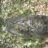 Žlutice - křížové kameny   horní pohled na pravý křížový kámen - duben 2012