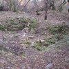 Přemilovice - stará tvrz | pozůstatky obytné věže přemilovické tvrze - říjen 2009