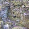 Přemilovice - stará tvrz | zachované zdivo obytné věže staré tvrze - březen 2010