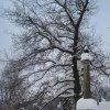 Nové Hamry - sloup se sochou Panny Marie (Immaculata) | sloup se sochou Panny Marie - únor 2010