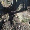 Javorná - socha sv. Jana Nepomuckého | pískovcová patka podstavce bývalé sochy sv. Jana Nepomuckého pod mohutnou lípou v polích u zaniklé vsi Javorná - březen 2017