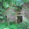 Lipoltov (Lappersdorf) | ruiny domu v Lipoltově - červen 2010