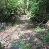 Lipoltov (Lappersdorf) | návesní rybník s kamenou hrází - červen 2010