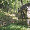 Korunní Kyselka - pohřební kaple Carla Gölsdorfa | zdevastovaná pohřební kaple Carla Gölsdorfa u bývalých lázní v Korunní Kyselce od západu - červen 2017