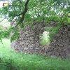 Tocov - kaple Nejsvětější Trojice   západní boční stěna zdevastované kaple Nejsvětější Trojice u Tocova - červen 2010