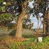 Dlouhá - pomník obětem 1. světové války | znovuvztyčení rozvaleného pomníku obětem 1. světové války v zaniklé vsi Dlouhá - září 2018