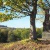 Dlouhá - pomník obětem 1. světové války | zadní strana znovuvztyčeného pomníku padlým na návrší Heinberg nad zaniklou vsí Dlouhá - říjen 2018
