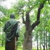 Dalovice - Körnerův dub | busta básníka Theodora Körnera před Körnerovým dubem  - květen 2009