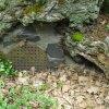 Dalovice - Körnerův dub | kovová mřížka v kořenových nábězích stromu - květen 2009