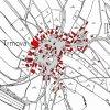 Trmová (Dürmaul)   katastrální mapa vsi Trmová z doby před rokem 1955
