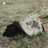 Údrč - Ulbertova kaple | opracovaný kamenný artefakt s uzamykatelnými železnými dvířky patrně ve funkci kasičky na dobrovolné příspěvky - březen 2017