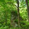 Stichlův Mlýn (Stichelmühle) | rozvaliny bývalých domů - červen 2009