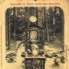 Karlovy Vary - lesní pobožnost | původní obrázek Panny Marie zavěšený na stromě na pohlednici z roku 1898