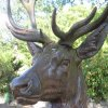 Karlovy Vary - plastika jelena | detail litinové plastiky jelena - září 2011