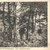 Březová - Střelecký mlýn | Café-restaurant Střelecký mlýn na pohlednici z roku 1925