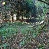 Mlyňany (Lindles) | pozůstatky zaniklé vsi Mlyňany (Lindles) - září 2015