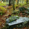 Žlutice - pomník Friedricha Ludwiga Jahna | rozvalený Janův pomník v lesích na Žluticemi - říjen 2013 (foto Jan Borecký)