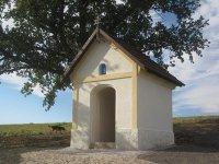 Hřivínov - kaple Nanebevzetí Panny Marie |