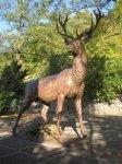 Karlovy Vary - plastika jelena |